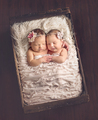 Lovely angels - sweety-babies photo