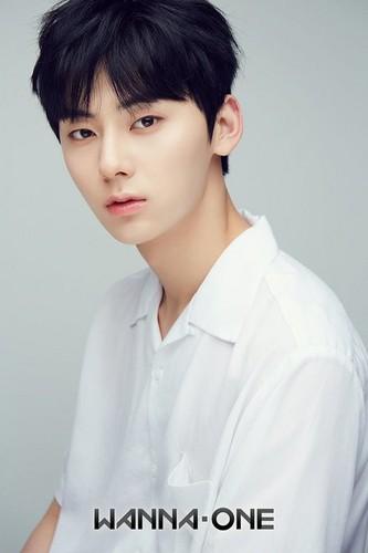 Wanna One wallpaper titled Minhyun♥ ღ
