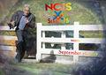 NCIS S15 returns 26 September 2017 - ncis wallpaper