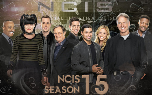 NCIS wolpeyper called NCIS Season 15