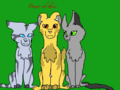 Power of three - warrior-cats photo