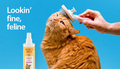 Promo Ad For Grooming Products - cats photo