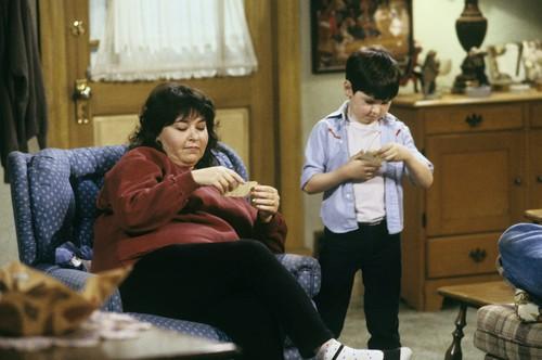 Roseanne karatasi la kupamba ukuta titled Roseanne