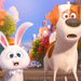 Secret Life Of Pets - yorkshire_rose icon