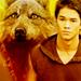 Seth  - twilight-series icon