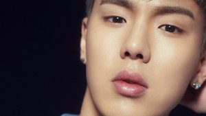 Shownu wallpaper