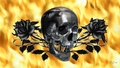 Skull and roses - gothic wallpaper