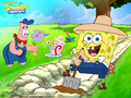 Spongebob and Patrick wallpaper - spongebob-squarepants wallpaper