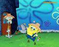 Spongebob and Squidward - spongebob-squarepants photo