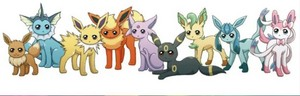 The Eevee family