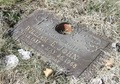 The Gravesite Of Little Willie John  - celebrities-who-died-young photo
