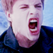 Twilight Saga - twilight-series icon