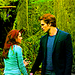 Twilight Saga - twilight-series icon