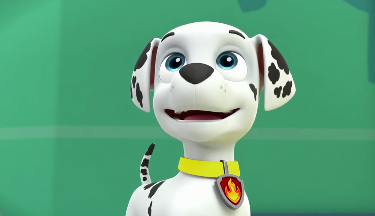 marshall paw patrol images vlcsnap 2017 05 30 06h08m05s644 hd
