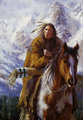 Warriors of the High Country (Ute) by James Ayers