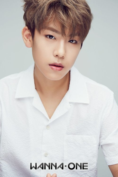Wanna One Images Woojin ღ Hd Wallpaper And Background Photos