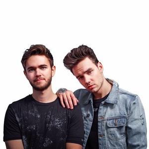 Zedd and Liam
