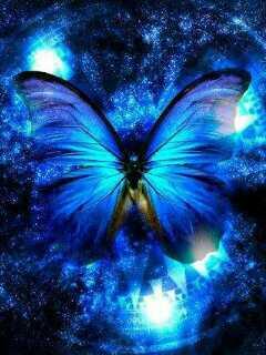 butterflyi 0UhrDzYS
