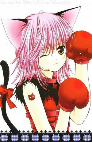 image. Amulet Cat