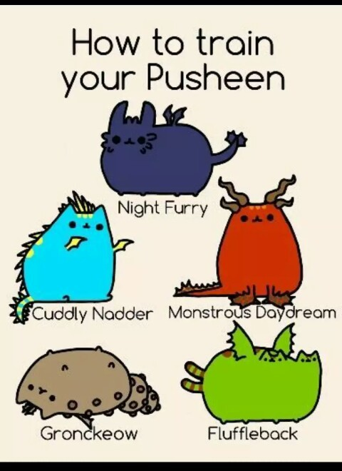 pusheen dragon