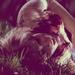 scream  - werecoyote24 icon