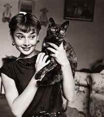 black gatos wallpaper titled Audrey and her black cat