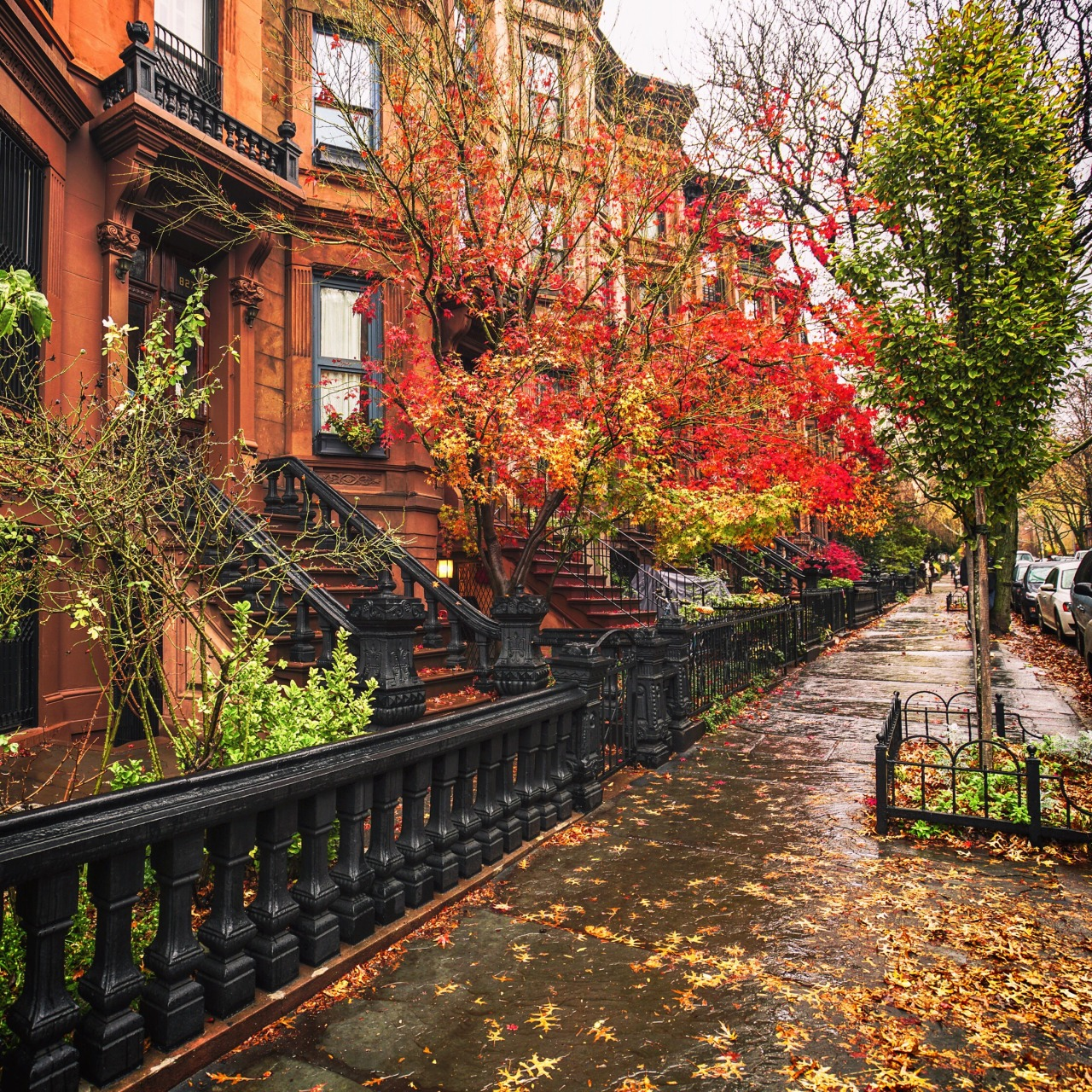 autumn in new york - photo #14