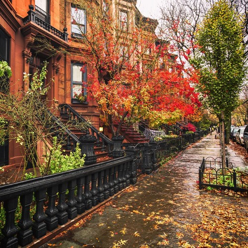 Beautiful Things 壁纸 titled Autumn In New York