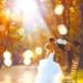 Autumn Wedding - daydreaming icon