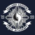 BALAMB GARDEN SEED ACADEMY 1999 - final-fantasy-viii photo