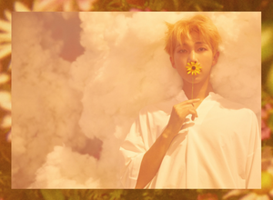 Bangtan Boys concept fotografias for 'Love Yourself'
