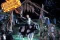 Beetlejuice - beetlejuice-the-movie photo
