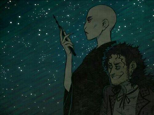 Bellatrix Lestrange fond d'écran called Bella and Voldemort Genderbend