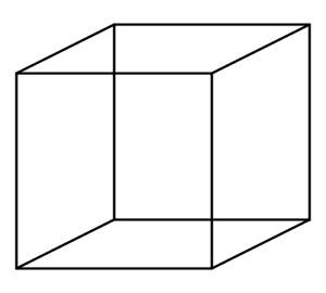 Best illusion 26