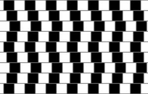 Best illusion  30