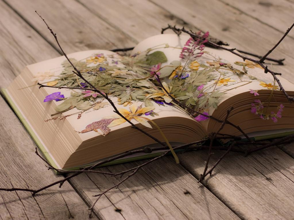 Book, karatasi la kupamba ukuta
