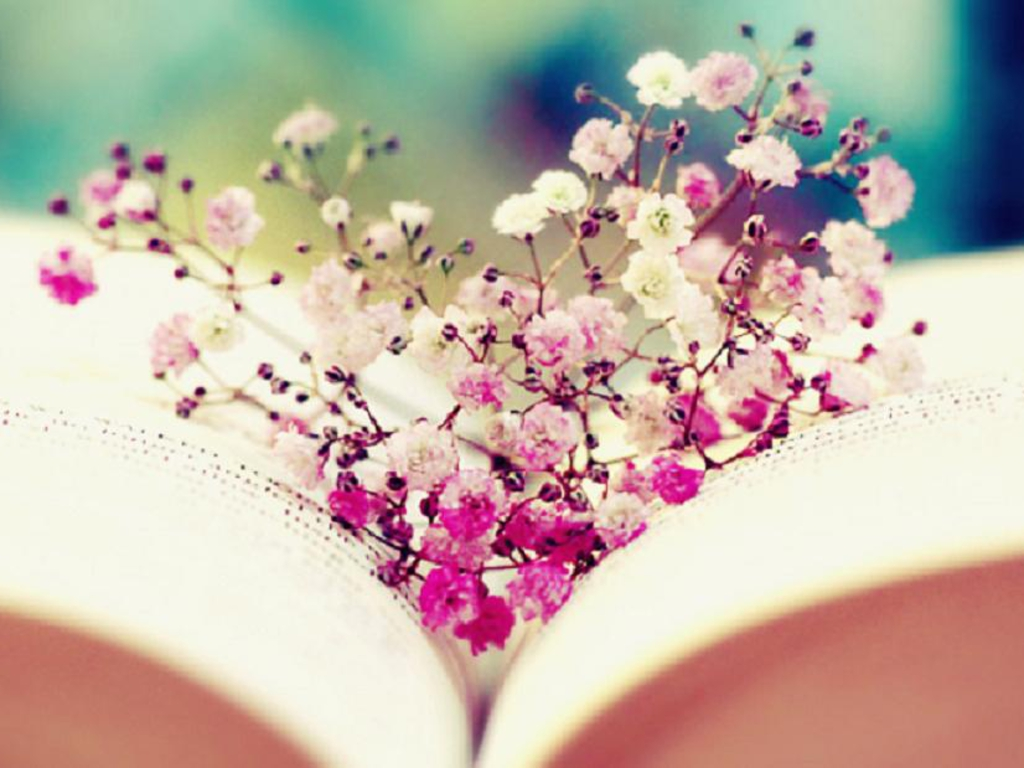 Booknerd images Book and FlowersWallpaper HD wallpaper and