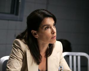 Carolyn Berek