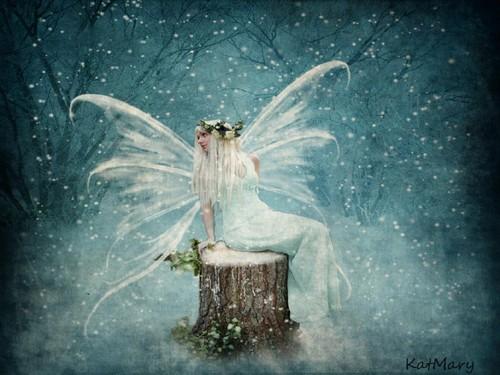 giáng sinh hình nền called giáng sinh Fairy ❅