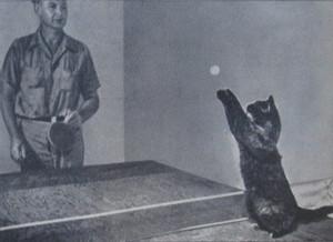 Dagwood Playing Ping Pong