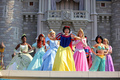 Disney Princesses  - disney photo