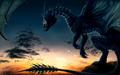 Dragon - dragons wallpaper