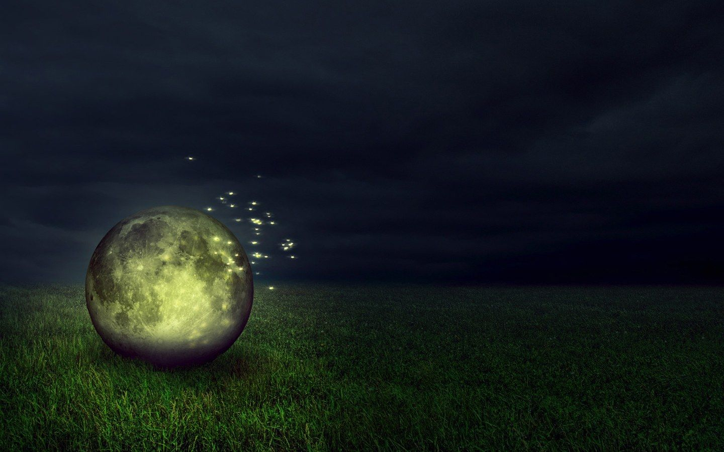Fireflies images Fireflies HD wallpaper and background photos ... for Firefly Insect Wallpaper  589hul