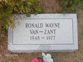 Gravesite Of Ronnie Van Zant - celebrities-who-died-young photo
