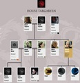 House Targaryen Family Tree (after 7x07) - game-of-thrones photo