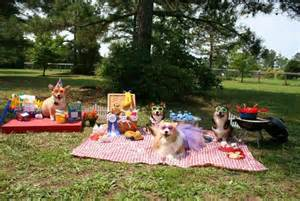 Kleks and Sunny...Would あなた like To 登録する Us For A Picnic
