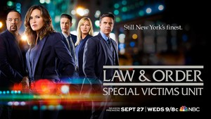 Law & Order: Special Victims Unit - Season 19 wallpaper