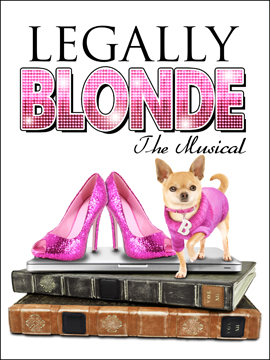 Legally Blonde the Musical 바탕화면 called Legally Blonde - The Musical
