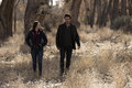 "Midnight, Texas ""Blinded 由 The Light"" (1x06) promotional picture"