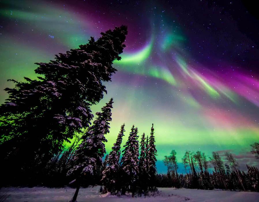 Aurora Borealis Images Northern Lights, Alaska HD Wallpaper And Background  Photos